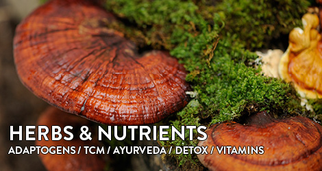 Superherbs herbs and vital substances Adaptogenic tcm ayurveda detox vitamins
